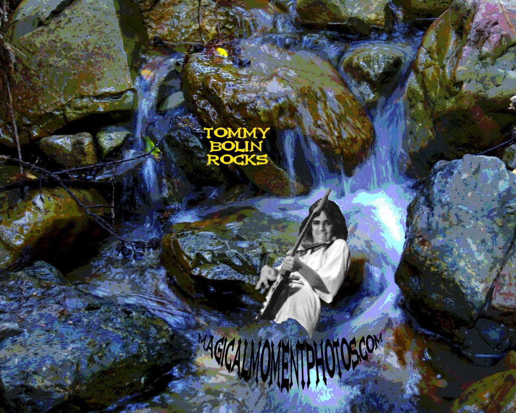 TOMMY BOLIN ARTWORK